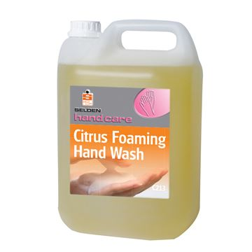 Picture of SELDEN CITRUS FOAM SOAP - 5 Litre C213